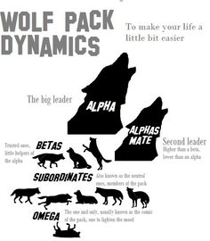Just to make your life a little bit easier, I made this pretty quickly for everyone that's interested about wolf pack dynamics at all. Some people might have different opinions about this, but this...