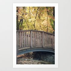 An Autumn Walk in the Park #fall #leaves #color #yellow #bridge #foliage #leafpeepers #scenery #photography