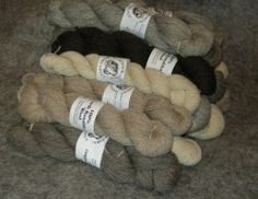 North Ronaldsay wool. Due to the variations in the fleeces the colours vary from batch to batch. Hank weights are approximate.