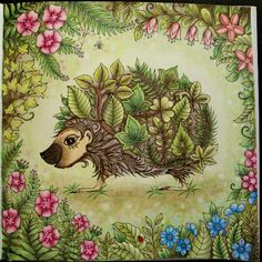 Take a peek at this great artwork on Johanna Basford's Colouring Gallery! Enchanted Forest Book, Enchanted Forest Coloring Book, Joanna Basford, Secret Garden Coloring Book, Johanna Basford Coloring Book, Forest Background, Coloured Pencils, Color Pencil Art, Coloring Book Pages