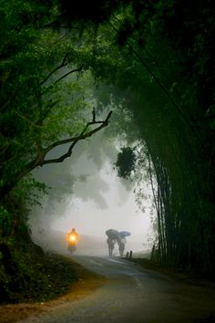 Road in the town of a Sa Pa Vietnam - by Nguyen Hoang