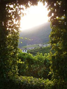The Hot List- Best Wine Hotels in Tuscany, Piedmont and Northern ...
