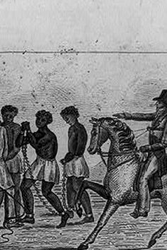 Expansion & Slavery | Stanford History Education Group