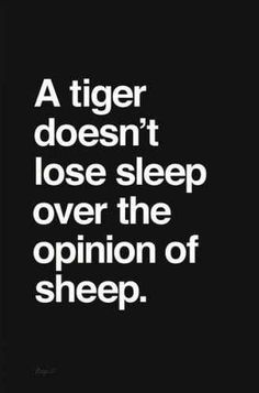 Confidence. A tiger doesn't lose sleep over the opinion of sheep.