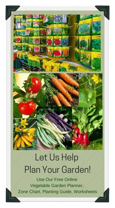 let us help plan your gardenfrom seeds to garden design and layout