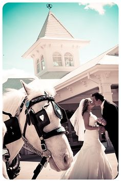 Disney Wedding Contact me for a free quote and NO fees for any of my services! Krystal Ensing Castles & Dreams Travel Agent Authorized Disney Vacation Planner Cruises and More krystal@castlesanddreamstravel.com 1-800-571-6313 Ext. 16 www.castlesanddreamstravel.com