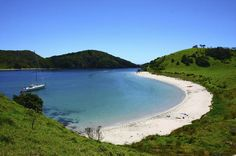 Waitangi Treaty Grounds - Lonely Planet
