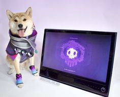 Sombra Doge by @Outside_the_Vox