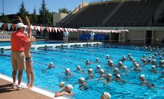 Stanford Swimming Diving Pinterest The O 39 Jays Jim O 39 Rourke And Lets Go