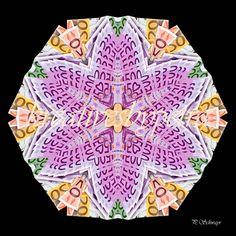 Mandala ''Geld''  kreativesbypetra  #mandala #mandalas #mandalaart #mandalastyle #inspiration #innereruhe #spirit #geld #money Mandala Art, Petra, Beach Mat, Outdoor Blanket, Mandalas, Mosaics, Money, Canvas, Creative
