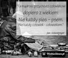 """Jan Sztautynger - cytaty  """"Ta mądrość przychodzi człowiekowi dopiero z wiekiem: Nie każdy pies – psem. Nie każdy człowiek - człowiekiem.""""  - Jan Sztautynger"""
