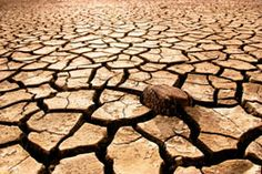 Photo about Cracked, parched land after a drought. Image of climate, drought, brake - 3534943 Global Warming Issues, Environmental Justice, Climate Change Effects, Science And Nature, Images, Survival, Earth, Design, Digital Photography