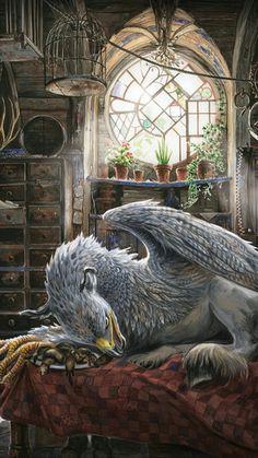 Buckbeak the Hippogriff Arte Do Harry Potter, Harry Potter Drawings, Harry Potter Tumblr, Harry Potter Love, Harry Potter Universal, Harry Potter Fandom, Harry Potter World, Slytherin, Hogwarts
