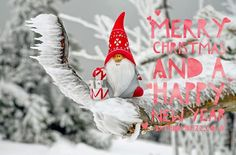 Everybody is celebrating Christmas with their family members and friends. Merry Christmas 2019 Wishes meant Christmas trees annually. Christmas Trivia, Merry Christmas Wishes, Best Christmas Gifts, Santa Christmas, Christmas Greeting Cards, Christmas Greetings, Christmas 2019, Christmas Traditions, Merry Xmas