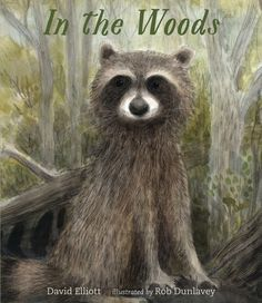 In the Woods by David Elliott , illustrated by Rob Dunlavey A New York Times best-selling author shares his love for w. Woodland Creatures, Woodland Animals, David Elliott, Collection Of Poems, Expressive Art, Dark Wood, The Book, The Darkest, Woods