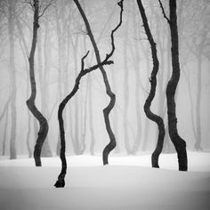 Great #BW #Landscape #photography ... so much #silence