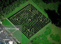 Traquair House maze  - (explore your biking wanderlust on www.motorcyclescotland.com) Royal Garden, Greek Mythology, Topiary, Maze, Garden Inspiration, Athens, Stepping Stones, Sculpting, City Photo