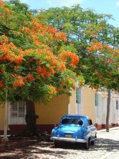 Cuba....love the colors!  #Cuba #travel