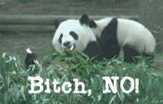 When someone tries to take some of your food…