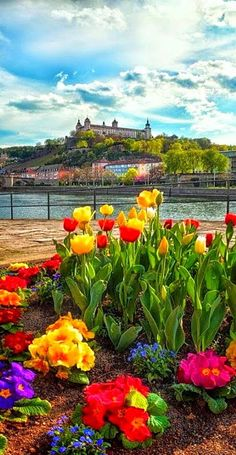 #Wurzburg #Germany http://en.directrooms.com/hotels/country/2-5/