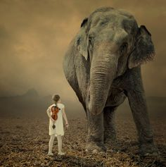 ❥ Come on, let me play your violin by Caras Ionut, via elephant and girl with violin Photomontage, Elephants Never Forget, Elephant Illustration, Photoshop, Elephant Love, Elephant Art, Wow Art, Gentle Giant, Jolie Photo
