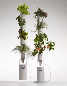 Grow a vertical indoor garden beside a window year-round with this automated plant feeding and watering system. #verticalgarden