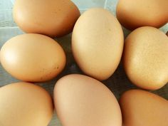 The Ultimate Guide to Storing Food in Bulk: Dairy and Eggs