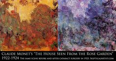 Claude Monet and Ultraviolet Light. Did the Master Impressionist painter have UV supervision ?