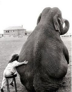 This is my friend, Christa Lee's mother. The elephants name is Sadie. From the Escalante Circus!