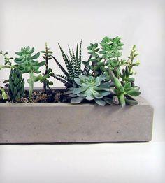 Long Concrete Tray//