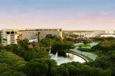 """Hilton Hotels & Resorts """"Orlando Lake Buena Vista"""" location is just steps from Downtown Disney, and offers a 20% """"Celebrate Military"""" military discount.  Leave a review for Hilton Orlando Lake Buena Vista, or any of the over 70,000 businesses listed on our website."""