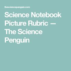 Science Notebook Picture Rubric — The Science Penguin