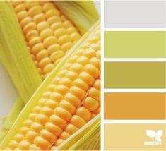 color cobb