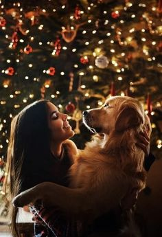 Awesome Xmas decorations tips are available on our site. Take a look and you wont be sorry you did. Dog Christmas Pictures, Christmas Puppy, Christmas Animals, Christmas Card Photo Ideas With Dog, Christmas Ideas, Christmas Tree, Photos With Dog, Dog Pictures, Christmas Photography