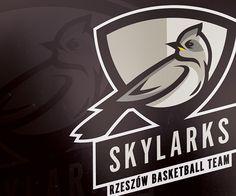 Team on behance mascot design, logo design, basketball teams, soccer jersey Basketball Workouts, Basketball Teams, Soccer Jerseys, Mascot Design, Logo Design, Bird Logos, Skylark, Sport Motivation, Logo Inspiration