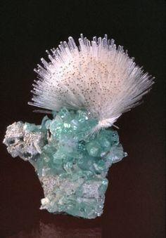Natrolite and Apophollite