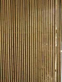 Bamboo Wall.