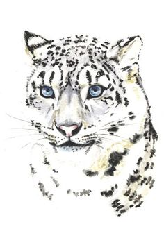 Snow leopard print, 5x7 from original painting, exotic endangered animals leopard painting earthspalette op Etsy, 7,69 €