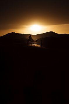 africa sahara night sunrise desert camel morocco