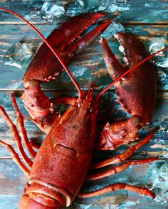 Lobster Art, Crab And Lobster, Fish And Seafood, Spinach Nutrition, Seafood Online, Lobster Restaurant, Cuban Cuisine, Latin Food, Food Menu