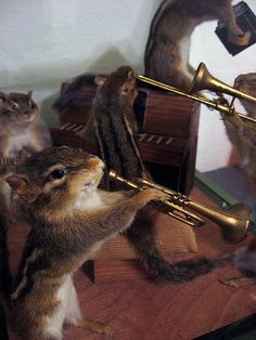 Chipmunk Band