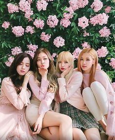 BLACKPINK 블랙핑크 Jennie Lisa Rosé Jisoo ❤❤ #pink