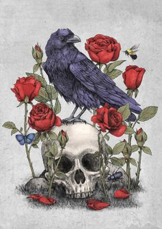 """""""Memento Mori"""" skull, crow, and roses by Terry Fan"""