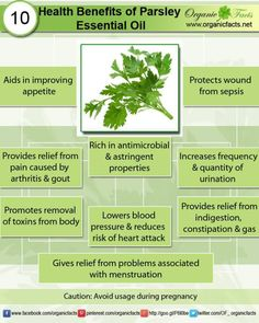 Health Benefits of Parsley Essential Oil