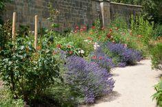 Garvetye walled garden flowers
