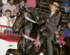 Carson Kressley - World Champion horseman!
