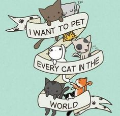 ♥♥ All of them!!! And most of the ones I have met I have done so. ♥ (Must love cats)