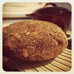 fresh easy no-knead bread