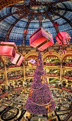 """Christmas Tree of the """" Galeries Lafayette"""" in Paris, France. by Kay Gaensler. Christmas Time in Paris love it Christmas In Paris, Christmas Lights, Christmas Time, Christmas Shopping, Pink Christmas, Merry Christmas, Christmas Decorations, Beautiful Christmas, Christmas Presents"""