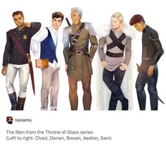 Men of TofG (Chaol, Dorian, Rowan, Aedion, Sam)
